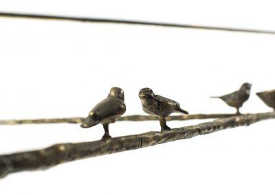 Birds facing long 1